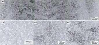 高温钛合金显微组织